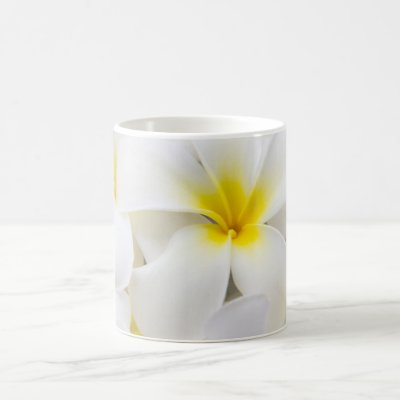 Frangipaniplumeria-Blumen-Foto Kaffeetasse | Zazzle.ch
