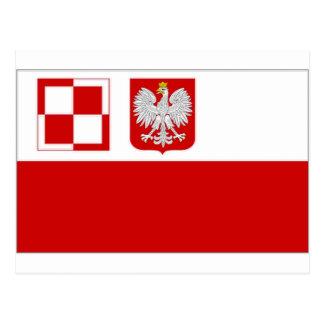 Polen-Luftwaffen-Fahne Postkarte