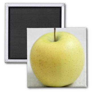 Pomme d'or du Limousin - de France - AOC pour Magnet Carré