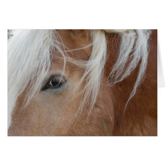 Pony-Grußkarte Grußkarte
