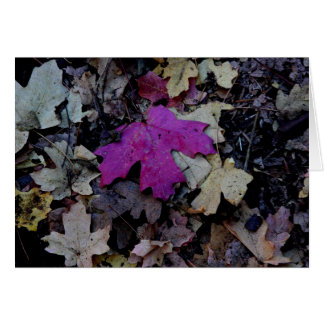 Pop des rosa Laubs Grußkarte