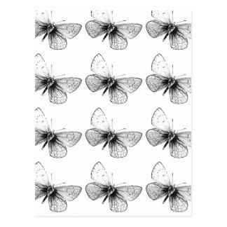 Pop-Kunst-Schmetterling Postkarte