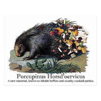 Porcupinus Hoerd'oervicus Postkarte