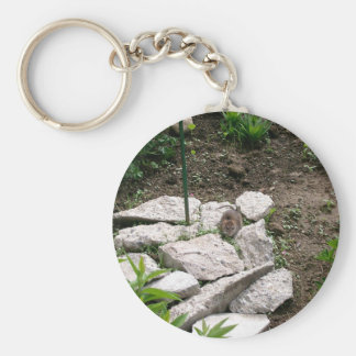 Porte - clé de campagnol porte-clé rond