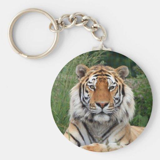 Porte-clés principal de photo de tigre beau, keych