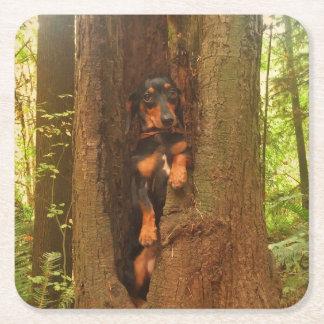 Portland-Baum Rechteckiger Pappuntersetzer