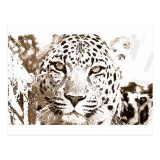 Portrait de léopard carte postale