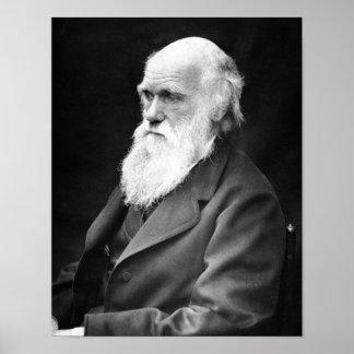 Porträt-Foto von Charles Darwin Poster