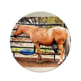 Porzellan-dekorative Platte - Palomino-Pferd Teller