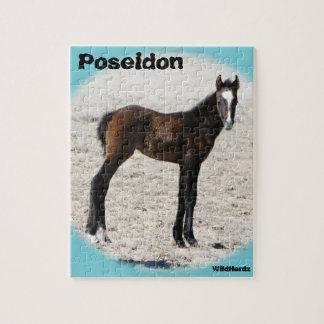 Poseidon Puzzlespiel