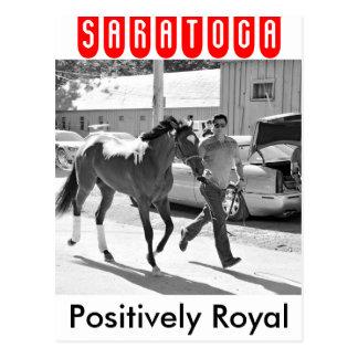 Positiv königlich am Pferdehafen Postkarte