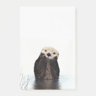 Post-it® Loutre de sourire adorable dans le lac
