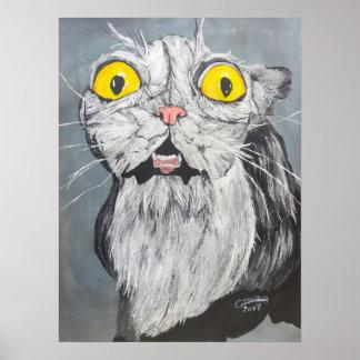 Poster Crazy cat