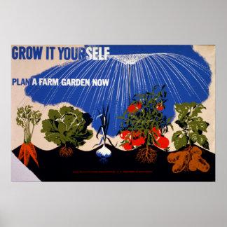 Poster vintage de potager