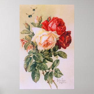 Poster vintage de trois roses