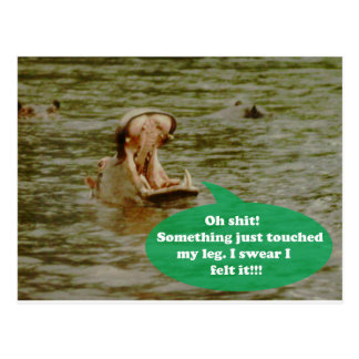 Postkarte - Flusspferde erhalten auch erschrocken!