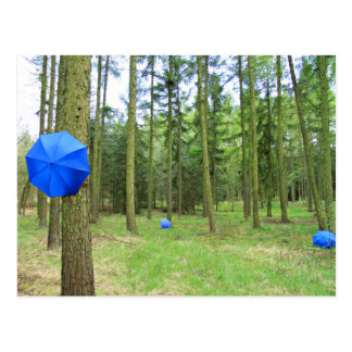 Postkarte - neulich im Wald