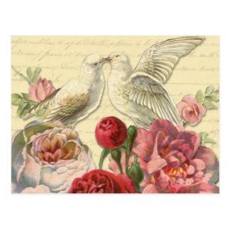 Postkarte: Vintage Tauben mit Rosen Postkarte