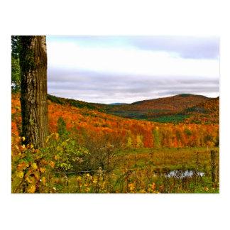 Postkarten-Vermont-Fall Postkarte