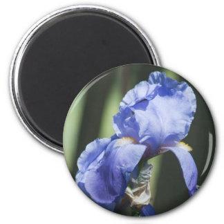 Prachtvolles Iris-Blumen-Geschenk Runder Magnet 5,1 Cm