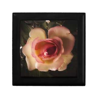 Prägeartige Sommer-Rose Erinnerungskiste