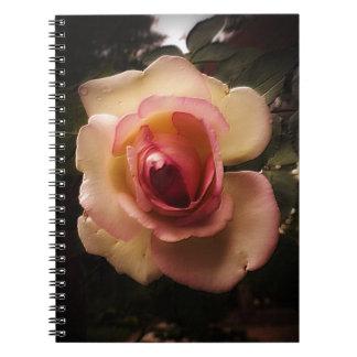 Prägeartige Sommer-Rose Notizblock