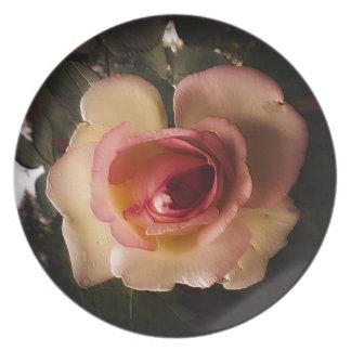 Prägeartige Sommer-Rose Teller