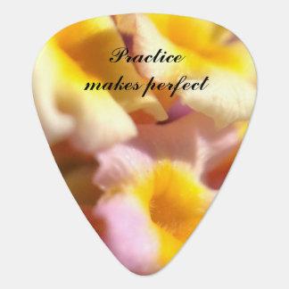 Praxis macht perfektes BlumenPlektrum Plektron