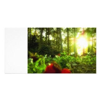 Prendre un bain de soleil des fleurs cartes de vœux avec photo