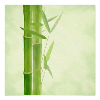 Pression de toile toile Canvas impression   bambou
