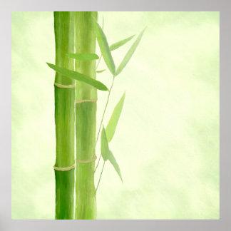 Pression de toile toile Canvas impression   bambou Affiches