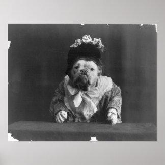 """Print """"Dog dressed in flower bedecked bonnet"""" Poster"""