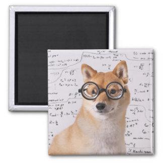 Professor Barkley 2 Zoll-Quadrat-Magnet Quadratischer Magnet