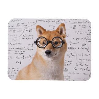 """Professor Barkley 4"""""""" flexibler Magnet des Foto-x3"""