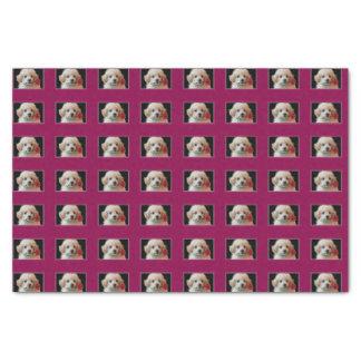 Pudelwelpen-Seidenpapier des Valentinsgrußes Seidenpapier