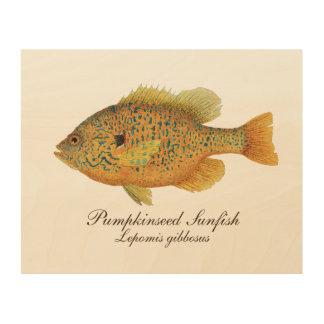 Pumpkinseed Sunfish Holzleinwand