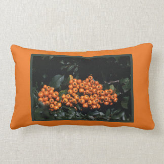 Pyracantha-Herbst-Orangen-Beeren Lendenkissen