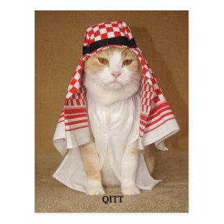 QITT/CAT POSTKARTE
