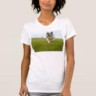 QPC von der Wiederverwendung von der T-Shirt
