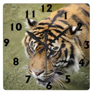 Quadratische Tiger-Uhr Quadratische Wanduhr