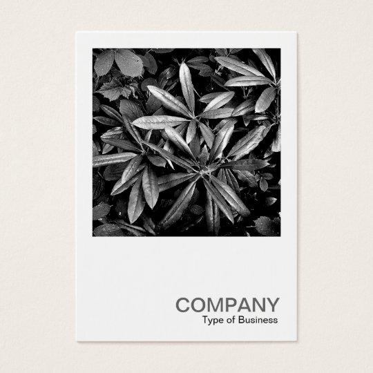 Quadratisches Foto 0132 - Rhododendron-Blätter Visitenkarte