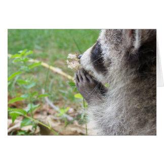 Raccoon mit Blume notecard Grußkarte