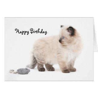 Ragdoll Kätzchen Geburtstags-Karte Grußkarte