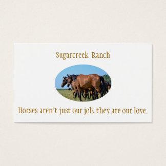 Ranch-Bucht-PferdeVisitenkarten Visitenkarte