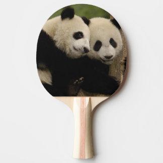 Raquette Tennis De Table Melanoleuca d'Ailuropoda de bébés de panda géant)