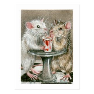 Rats sur une carte postale de date