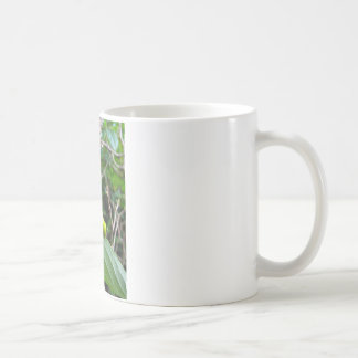 Raupe Kaffeetasse