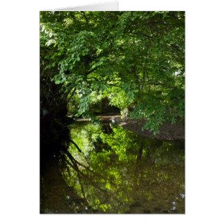 Ravensbourne Reflexionen Karte