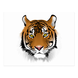 Realistisches bengalisches Tiger-Gesicht Postkarte