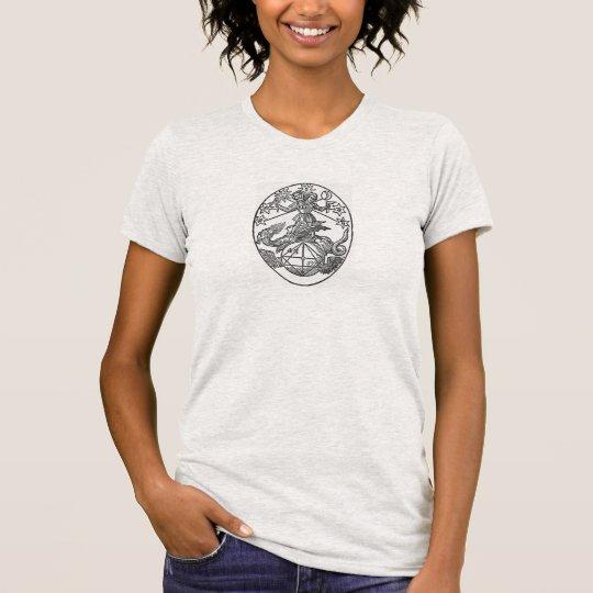 Rebis: Zwei Aspekte von den selben T-Shirt